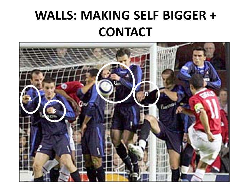 WALLS: MAKING SELF BIGGER + CONTACT C A B D