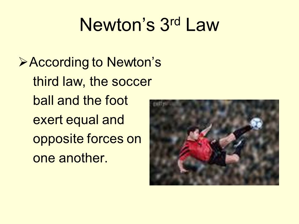 Newton's 3 rd Law  According to Newton's third law, the soccer ball and the foot exert equal and opposite forces on one another.