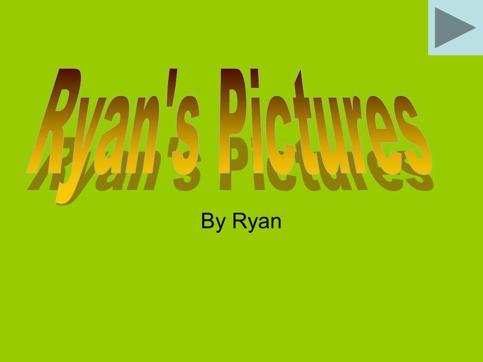 By Ryan