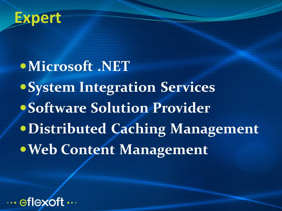 Expert Microsoft.NET System Integration Services Software Solution Provider Distributed Caching Management Web Content Management