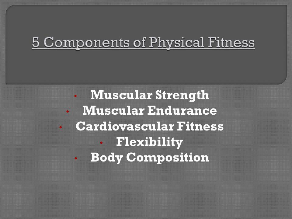 Muscular Strength Muscular Endurance Cardiovascular Fitness Flexibility Body Composition