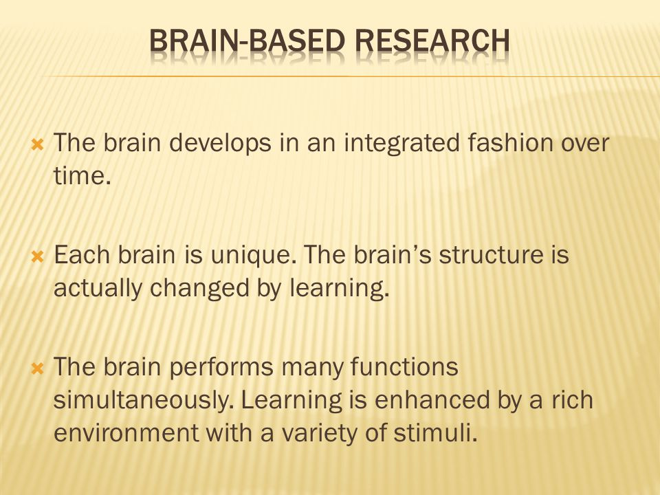 The brain develops in an integrated fashion over time.