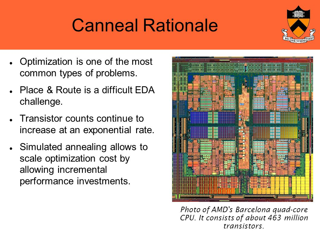 Canneal Rationale Optimization is one of the most common types of problems.