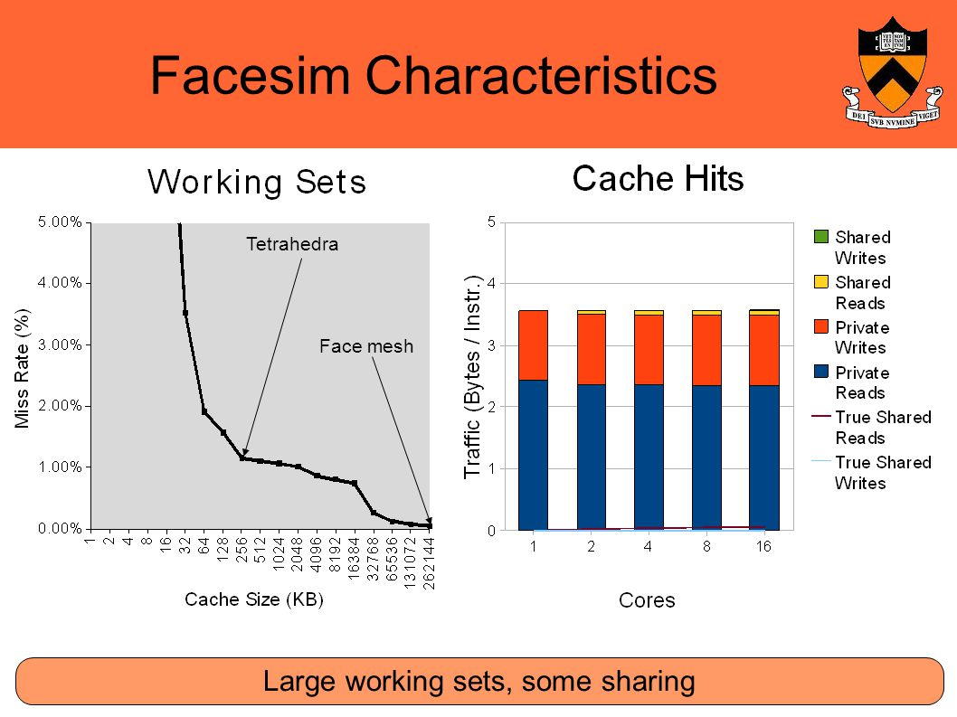 Facesim Characteristics Large working sets, some sharing Tetrahedra Face mesh