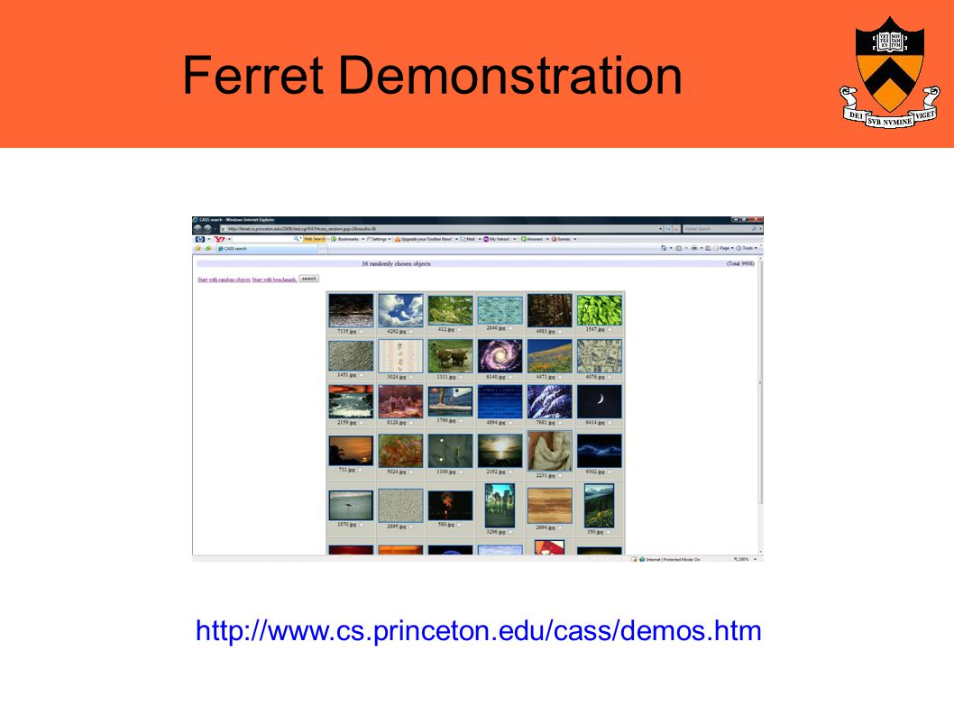 Ferret Demonstration http://www.cs.princeton.edu/cass/demos.htm