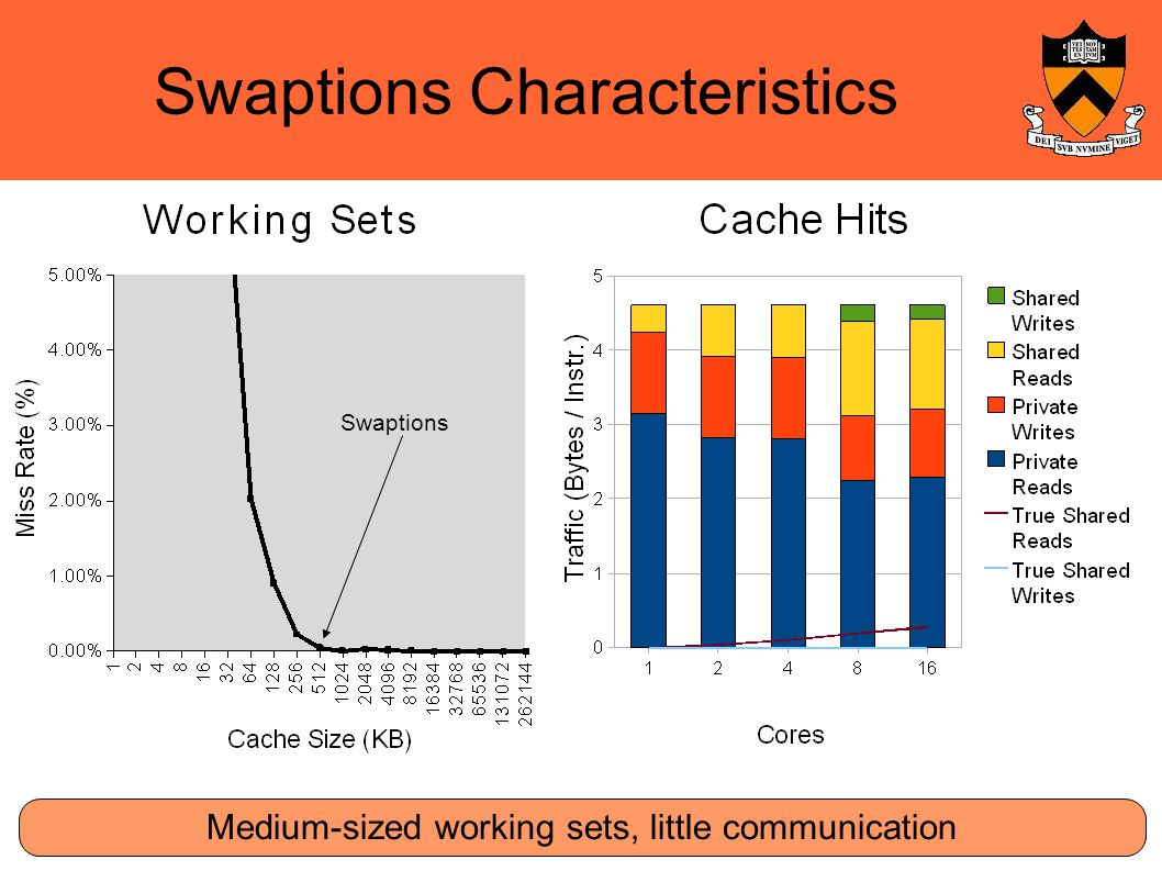 Swaptions Characteristics Medium-sized working sets, little communication Swaptions