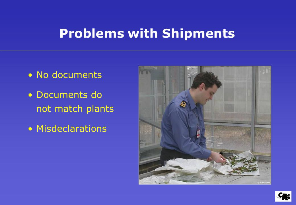 Problems with Shipments No documents Documents do not match plants Misdeclarations