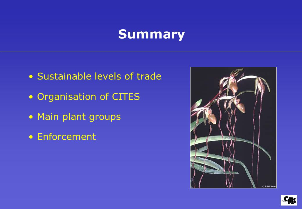 Sustainable levels of trade Organisation of CITES Main plant groups Enforcement Summary