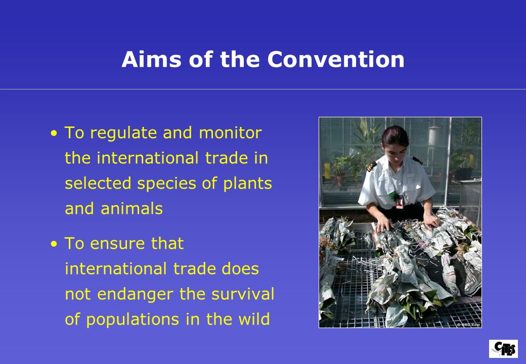 To regulate and monitor the international trade in selected species of plants and animals To ensure that international trade does not endanger the survival of populations in the wild Aims of the Convention