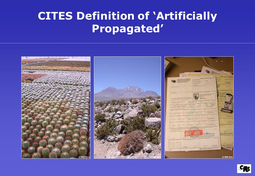 CITES Definition of 'Artificially Propagated'