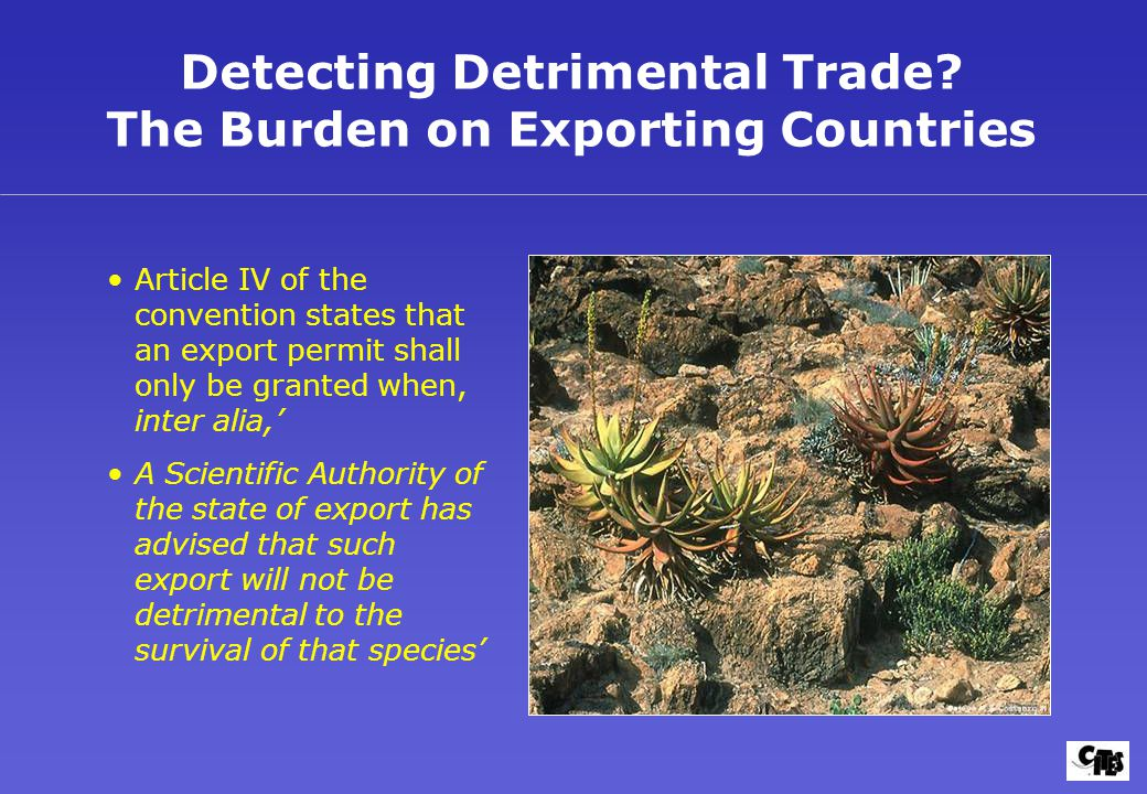 Detecting Detrimental Trade? The Burden on Exporting Countries Article IV of the convention states that an export permit shall only be granted when, i