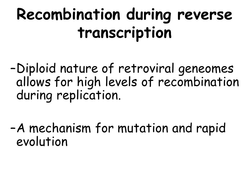 Recombination during reverse transcription –Diploid nature of retroviral geneomes allows for high levels of recombination during replication. –A mecha