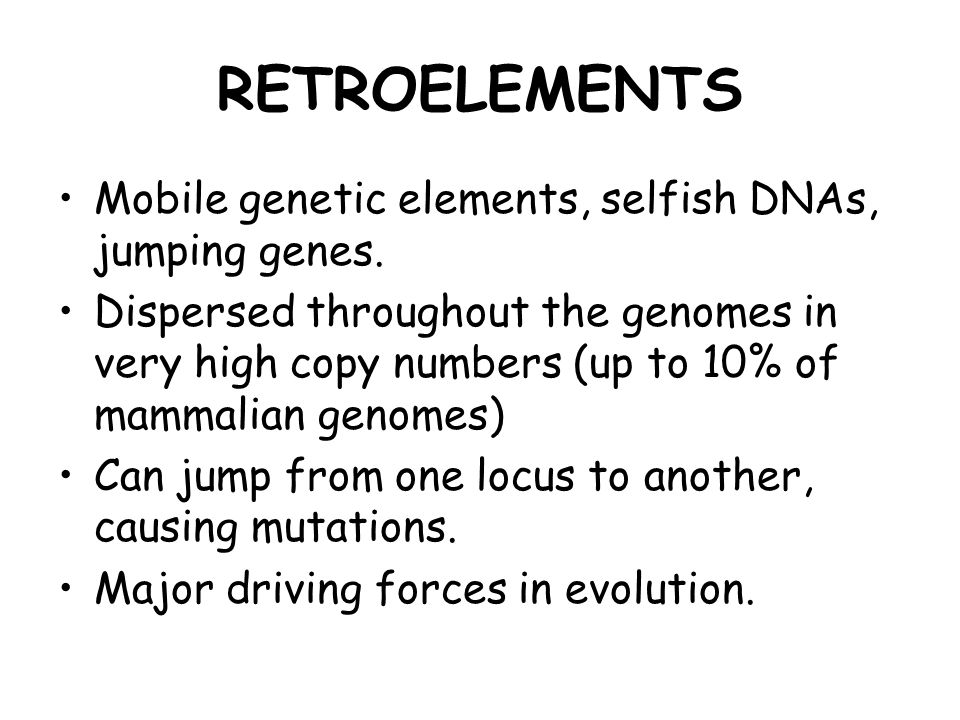 RETROELEMENTS Mobile genetic elements, selfish DNAs, jumping genes. Dispersed throughout the genomes in very high copy numbers (up to 10% of mammalian