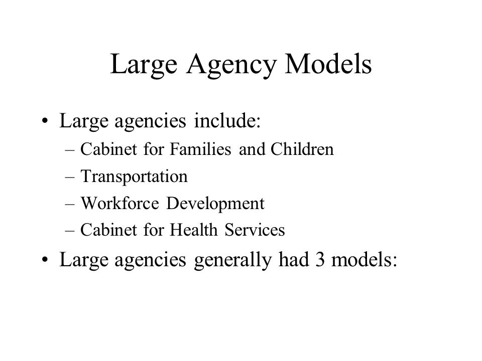 Large Agency Models Large agencies include: –Cabinet for Families and Children –Transportation –Workforce Development –Cabinet for Health Services Large agencies generally had 3 models: