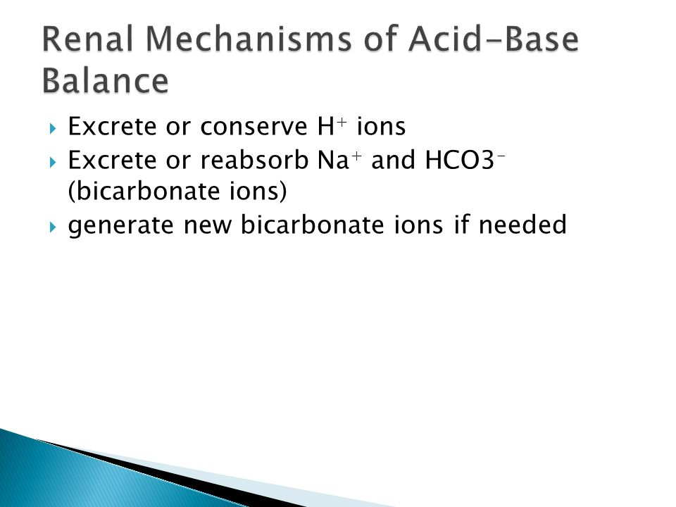 Excrete or conserve H + ions  Excrete or reabsorb Na + and HCO3 - (bicarbonate ions)  generate new bicarbonate ions if needed