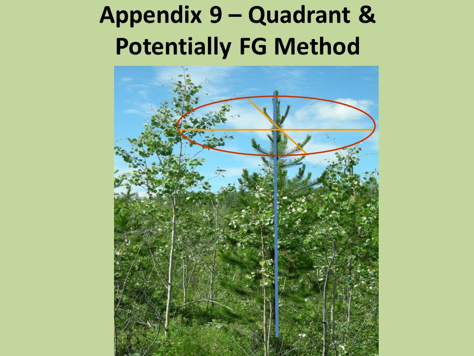 Appendix 9 – Quadrant & Potentially FG Method