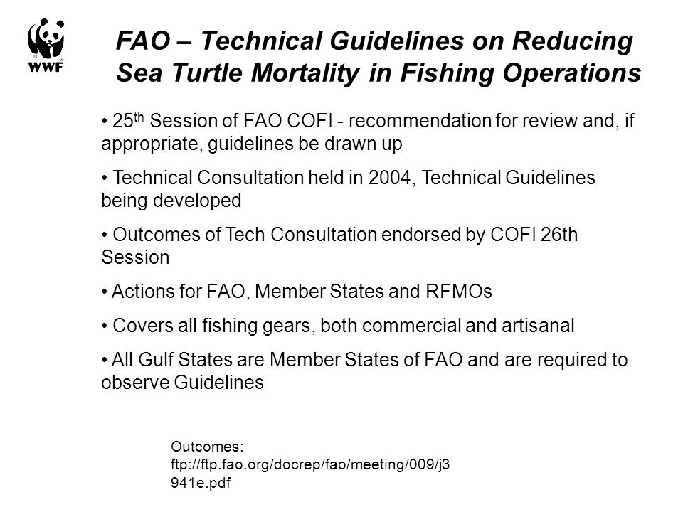 FAO – Technical Guidelines on Reducing Sea Turtle Mortality in Fishing Operations 25 th Session of FAO COFI - recommendation for review and, if approp