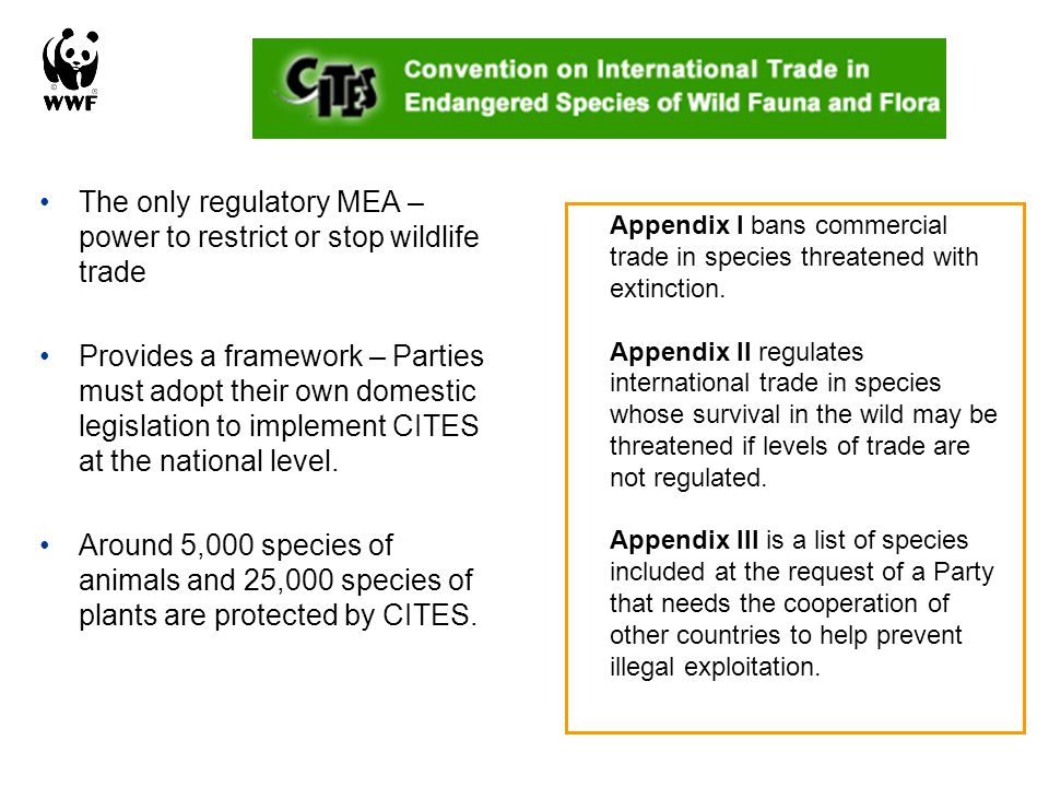 The only regulatory MEA – power to restrict or stop wildlife trade Provides a framework – Parties must adopt their own domestic legislation to impleme
