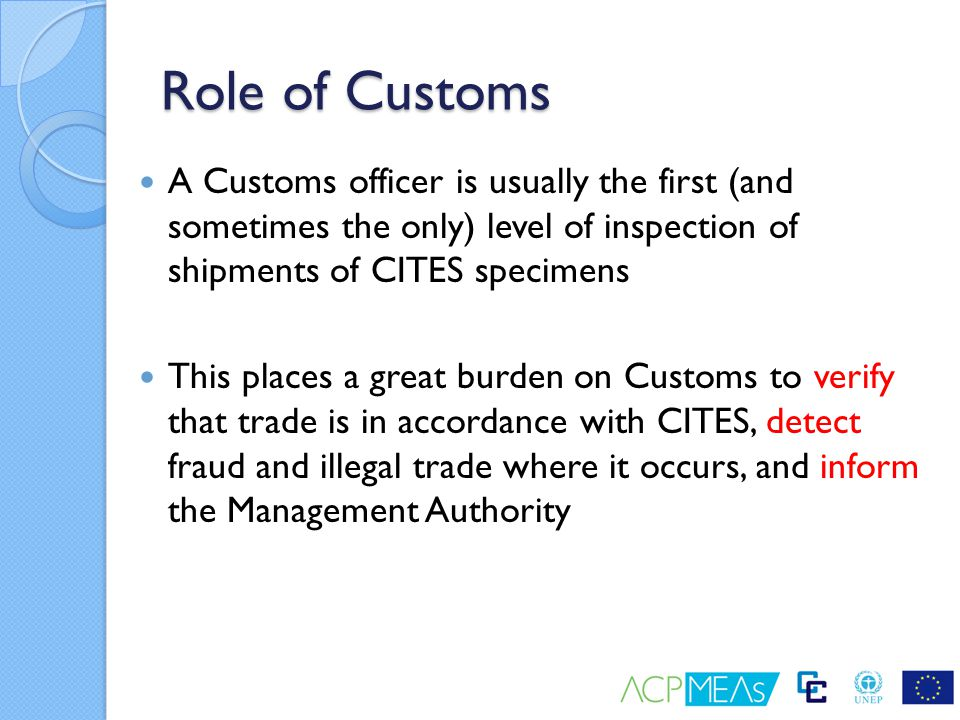 Role of Customs A Customs officer is usually the first (and sometimes the only) level of inspection of shipments of CITES specimens This places a grea