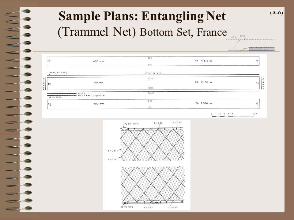 Sample Plans: Entangling Net (Trammel Net) Bottom Set, France (A-6)