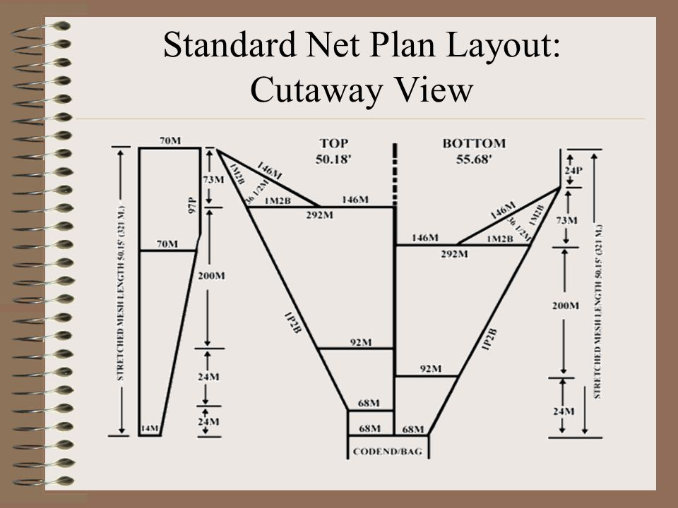 Standard Net Plan Layout: Cutaway View