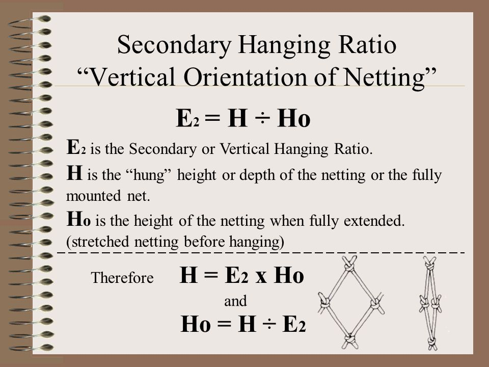 """Secondary Hanging Ratio """"Vertical Orientation of Netting"""" E 2 is the Secondary or Vertical Hanging Ratio. H is the """"hung"""" height or depth of the netti"""
