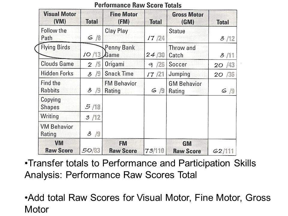 Transfer totals to Performance and Participation Skills Analysis: Performance Raw Scores Total Add total Raw Scores for Visual Motor, Fine Motor, Gros