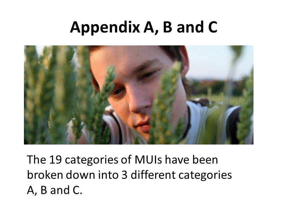 Appendix A, B and C The 19 categories of MUIs have been broken down into 3 different categories A, B and C.
