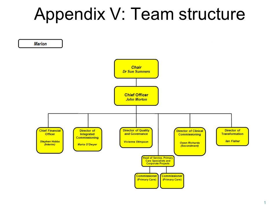 1 Appendix V: Team structure