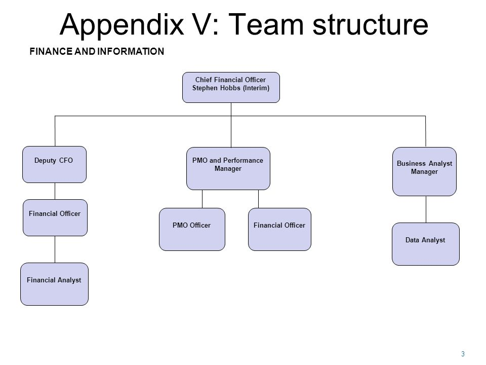3 Appendix V: Team structure FINANCE AND INFORMATION Chief Financial Officer Stephen Hobbs (Interim) PMO Officer Business Analyst Manager PMO and Performance Manager Deputy CFO Financial Officer Financial Analyst Financial Officer Data Analyst