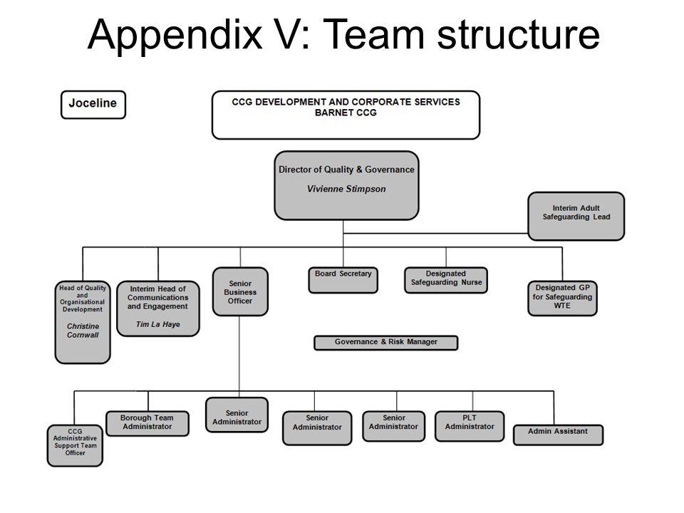Appendix V: Team structure