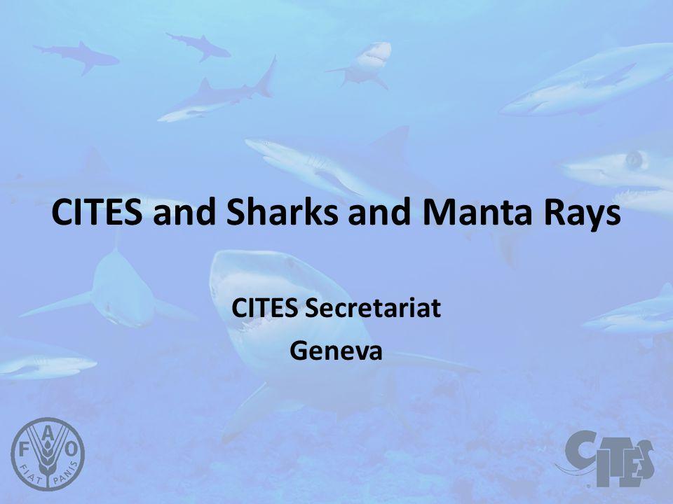 CITES and Sharks and Manta Rays CITES Secretariat Geneva