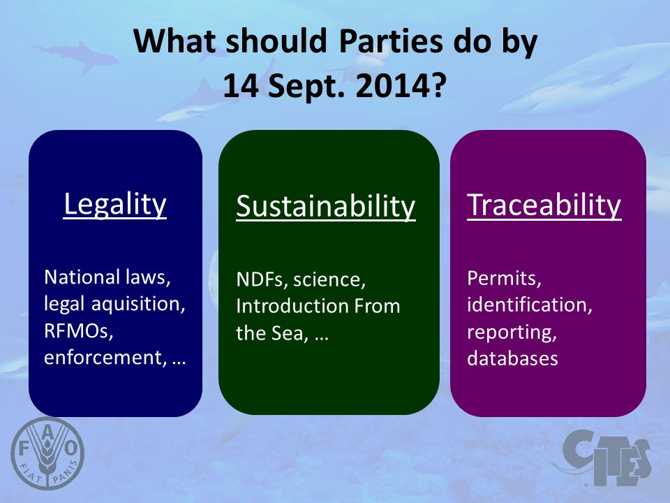 What should Parties do by 14 Sept. 2014.