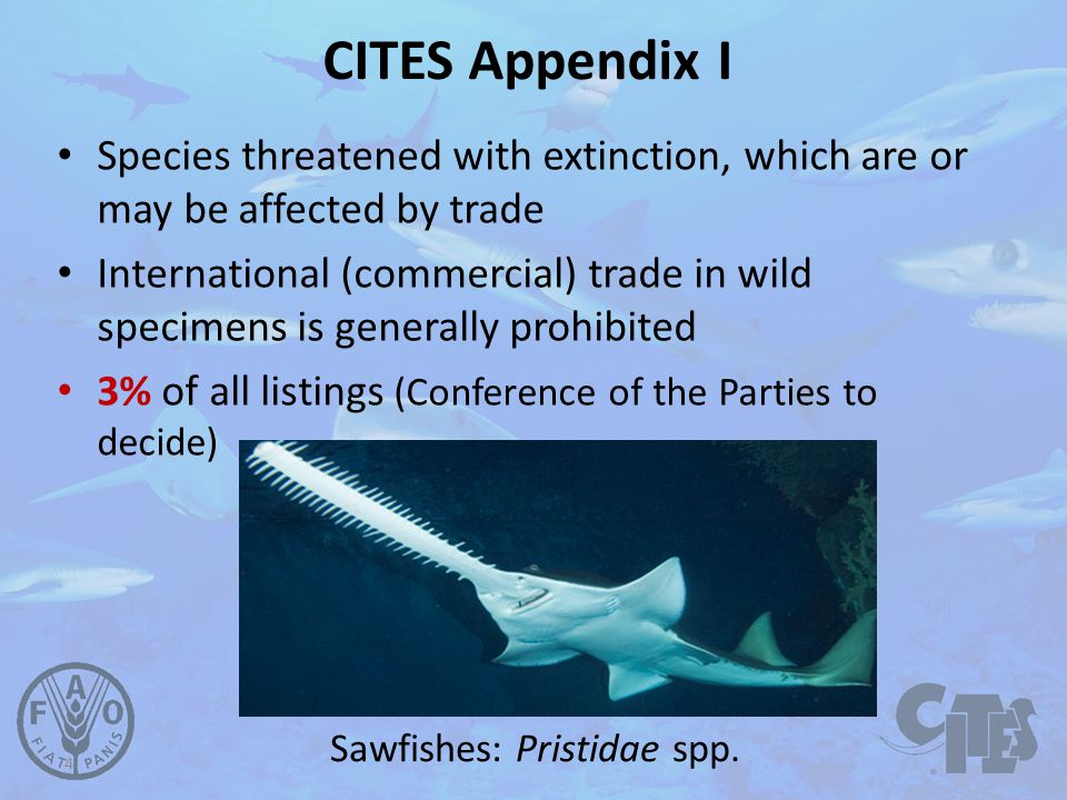 CITES permits and certificates Animals and plants (live, dead, parts and derivatives) Permits and certificates issued under certain conditions: – Lawfully obtained – Trade will not be detrimental to the survival of the species importexportre-exportintroduction from the sea