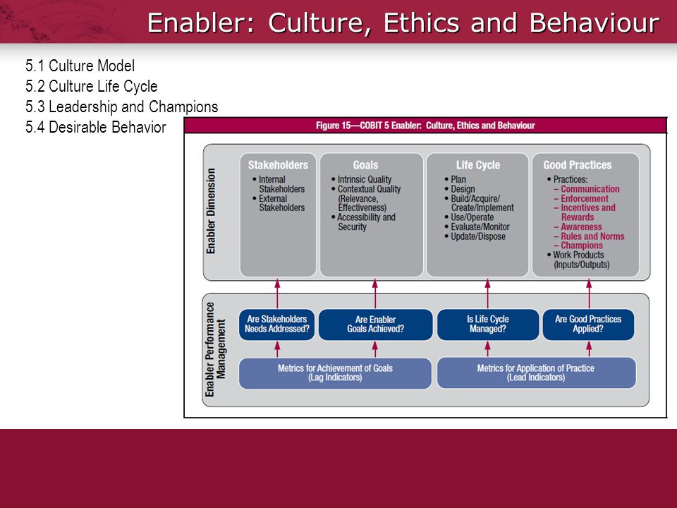 Enabler: Culture, Ethics and Behaviour 5.1 Culture Model 5.2 Culture Life Cycle 5.3 Leadership and Champions 5.4 Desirable Behavior