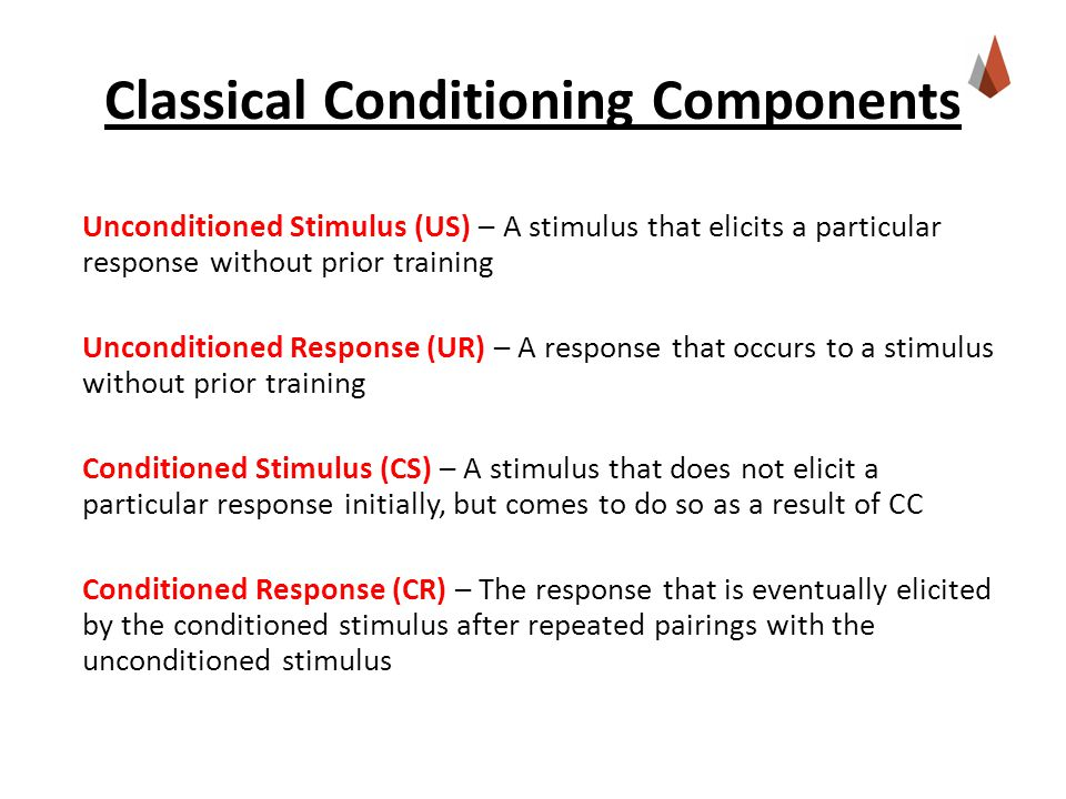 3 Things to Know About Instrumental (Operant) Conditioning 1.