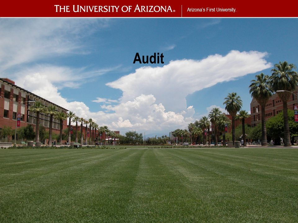 Arizona's First University. Audit