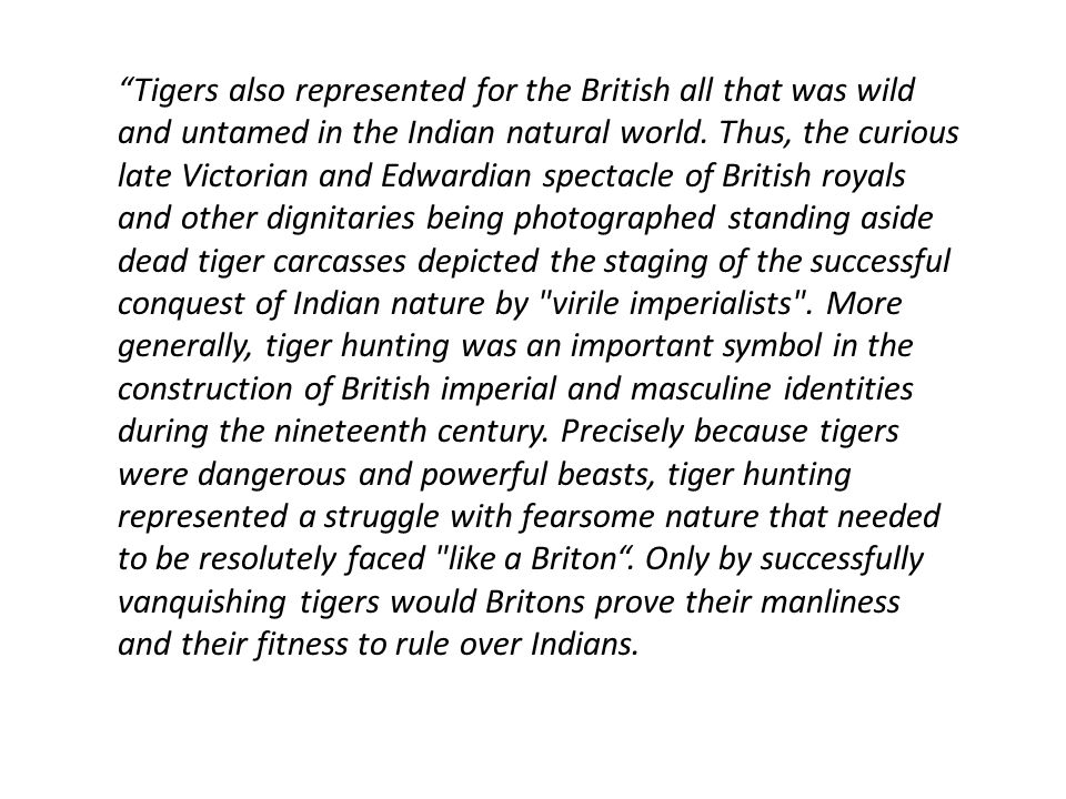 Tigers also represented for the British all that was wild and untamed in the Indian natural world.
