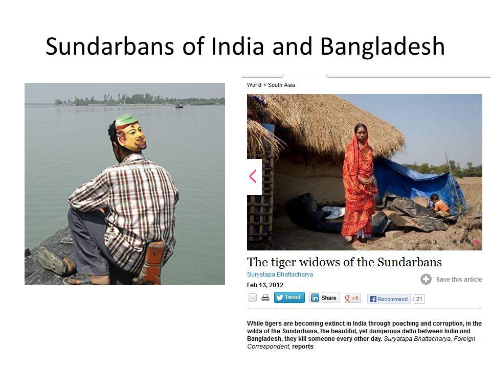 Sundarbans of India and Bangladesh