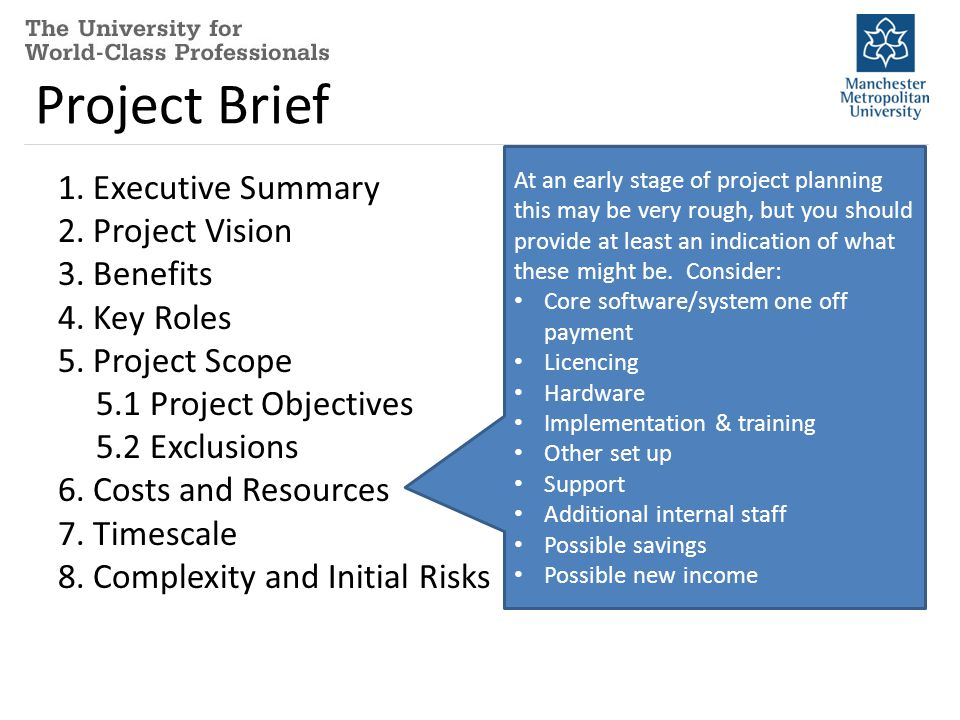 Project Brief 1.Executive Summary 2. Project Vision 3.