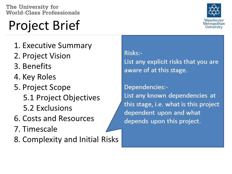 Project Brief 1. Executive Summary 2. Project Vision 3.