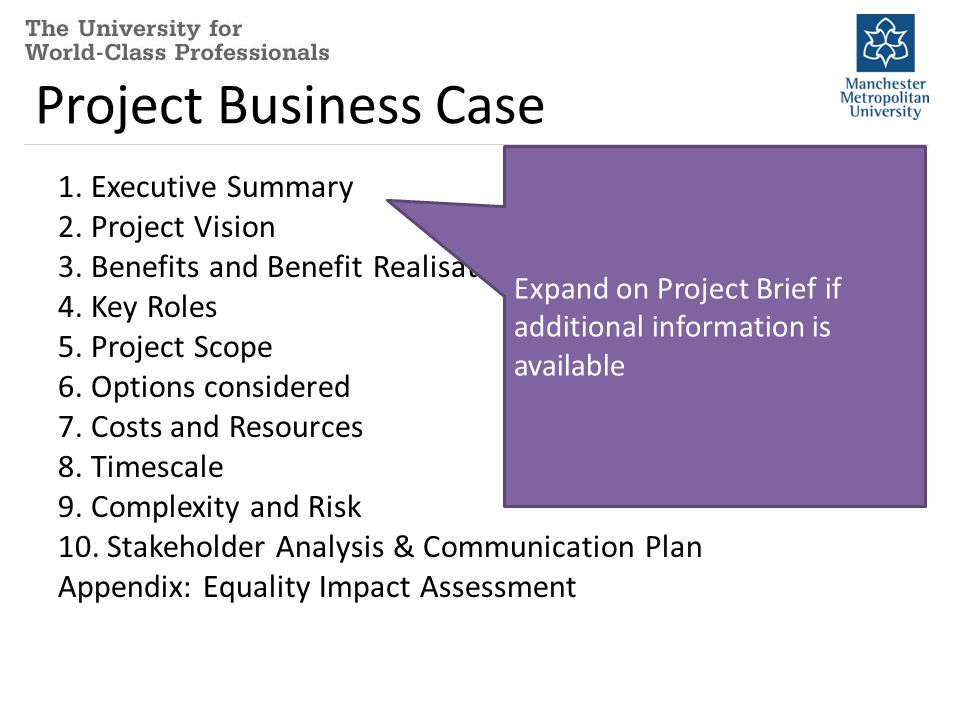Project Business Case 1. Executive Summary 2. Project Vision 3.