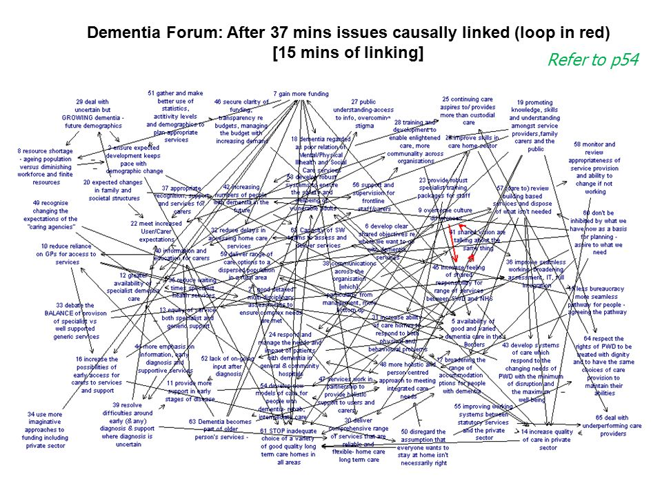 © Colin Eden and Fran Ackermann: Lecture Notes For Making Strategy: Mapping Out Strategic Success, Sage, 2011 Dementia Forum: After 37 mins issues cau
