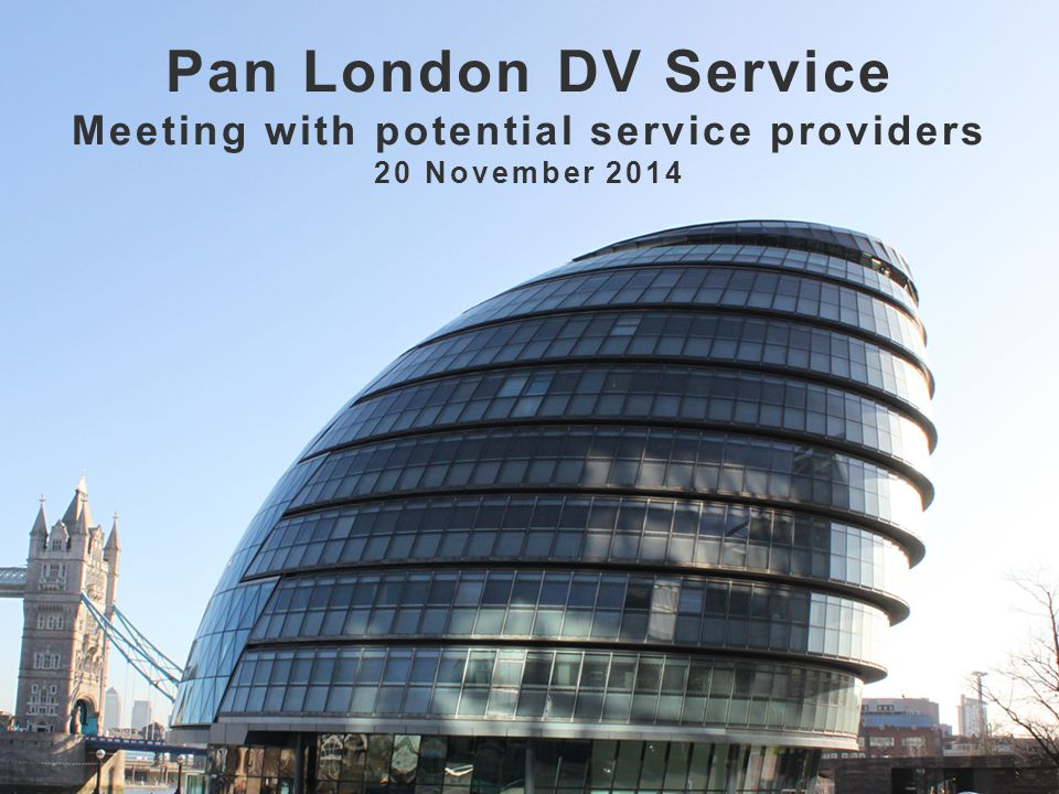 Pan London DV Service Meeting with potential service providers 20 November 2014