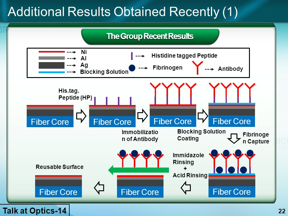The Group Recent Results Additional Results Obtained Recently (1) 22 Fiber Core Ni Al Ag Fiber Core Antibody Fibrinogen Fiber Core Histidine tagged Peptide His.tag.