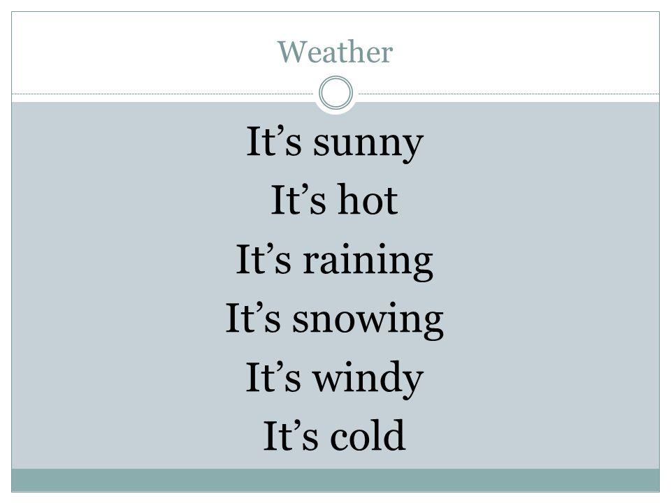 Weather It's sunny It's hot It's raining It's snowing It's windy It's cold