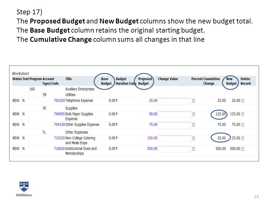 Step 17) The Proposed Budget and New Budget columns show the new budget total.