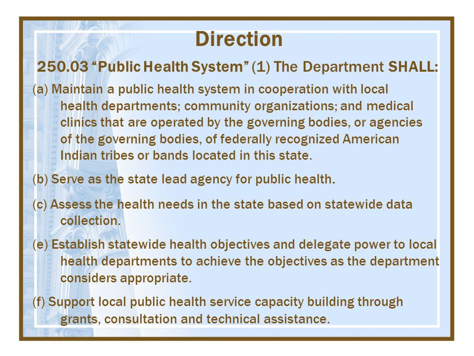Direction 250.03 Public Health System (1) The Department SHALL: (a) Maintain a public health system in cooperation with local health departments; community organizations; and medical clinics that are operated by the governing bodies, or agencies of the governing bodies, of federally recognized American Indian tribes or bands located in this state.