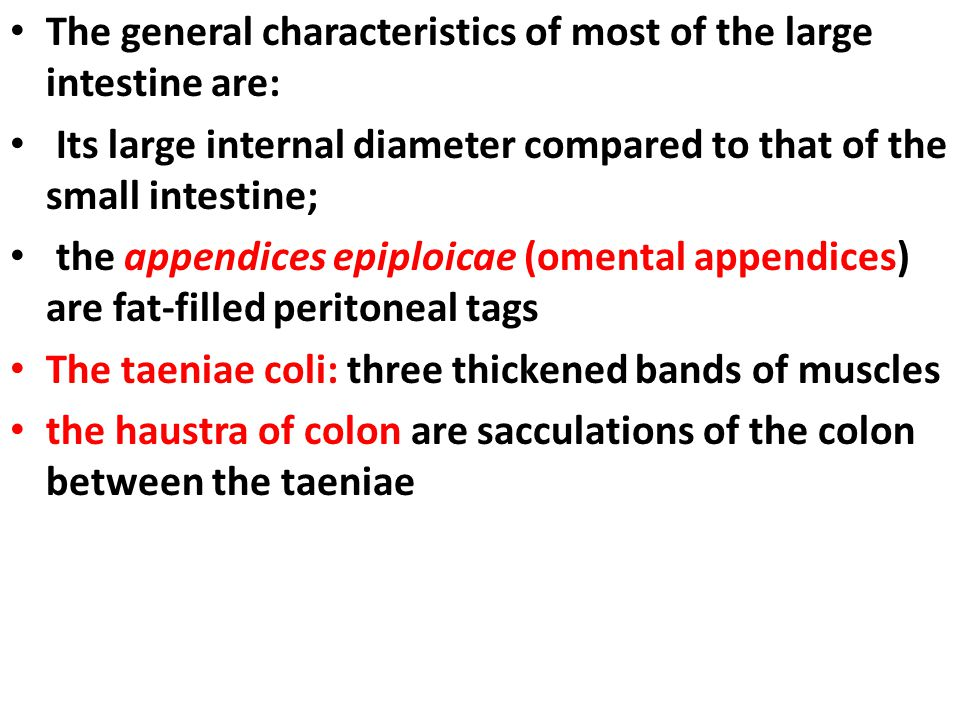 The general characteristics of most of the large intestine are: Its large internal diameter compared to that of the small intestine; the appendices ep