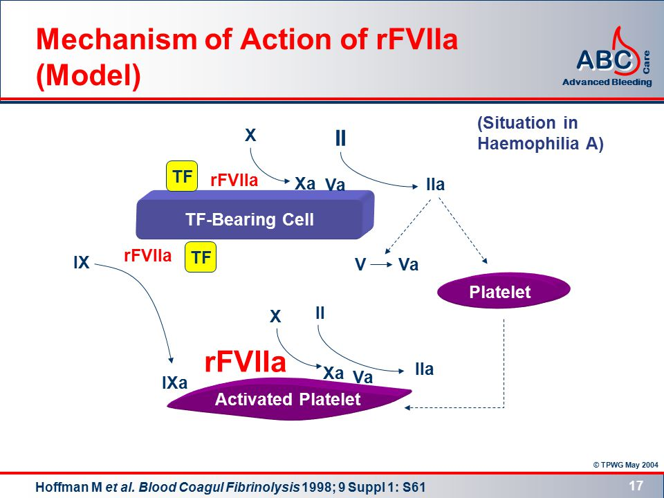 © TPWG May 2004 ABC Advanced Bleeding Care 17 TF-Bearing Cell Activated Platelet Platelet TF Xa X II IIa VVa II X IIa Xa Va IX IXa (Situation in Haemophilia A) rFVIIa Mechanism of Action of rFVIIa (Model) Hoffman M et al.